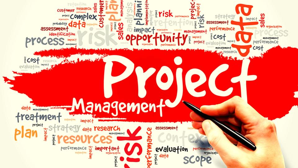 Alex Lubka Project management